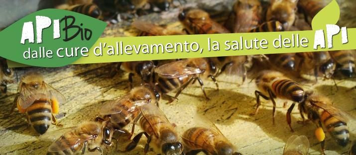 3 simposio mondiale di Apicultura Biologica dal 4 a 7 marzo